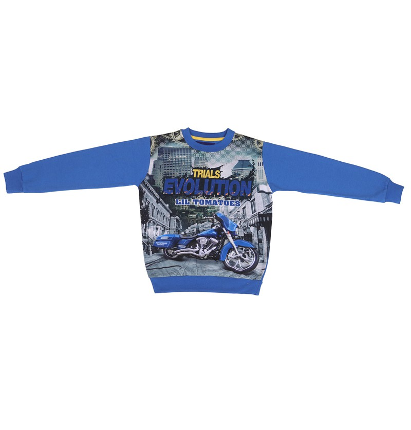 Evolution Royal Sweatshirt